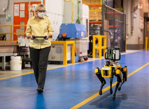 Ford utiliza estos robot-perro en sus plantas