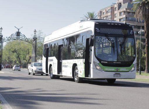 Mendoza apuesta por los buses de Scania a GNC